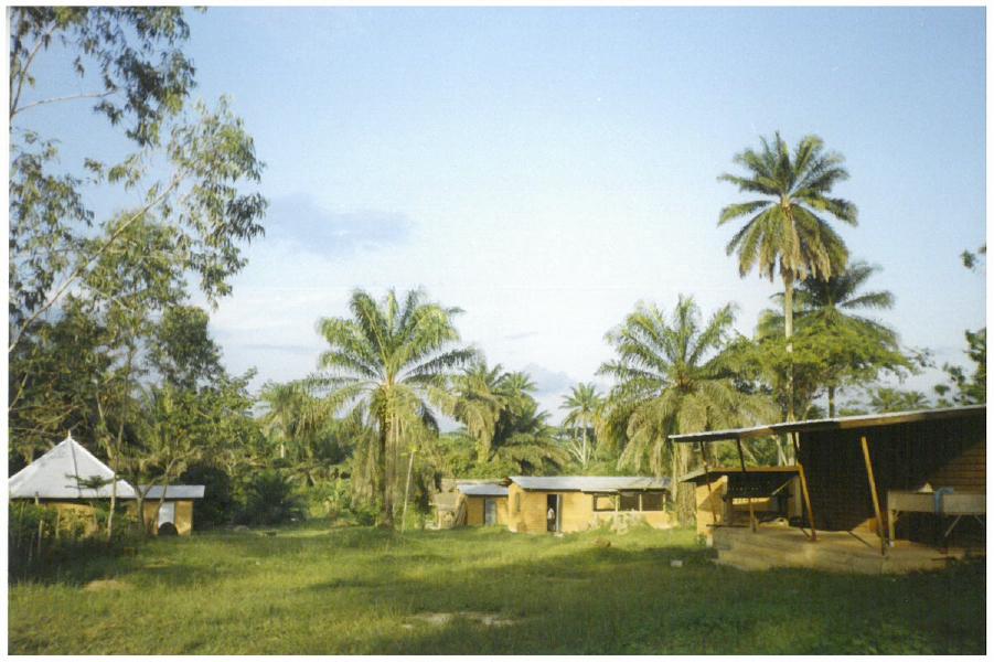SST the farm
